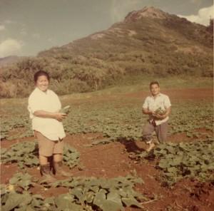 The First Kamiya Farmers