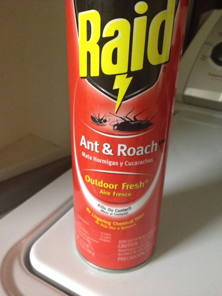 raid fear mongering hawaiifarmersdaughter