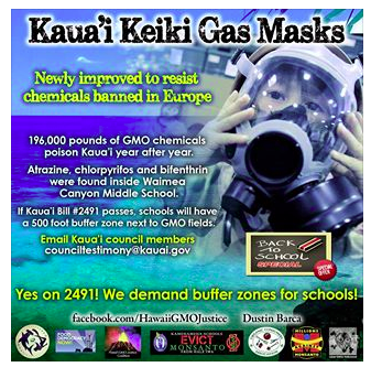 More gas mask imagery from the Kauai Bill 2491 fiasco.