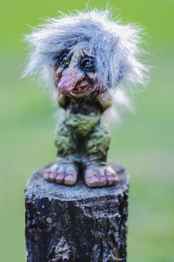 18713347 - the troll